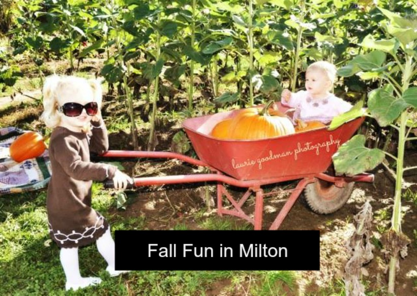 Fall Festivals, Fairs and Events around Milton and the Halton Region