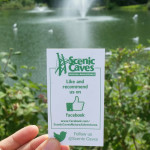 Momstown Explores: Scenic Caves